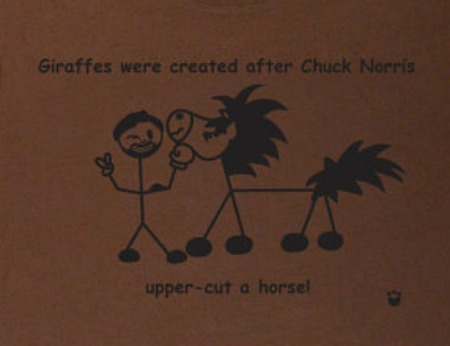 Chuck Norris Joke How Giraffes Were Created From Horses (Click image to get Geek Tshirt!)