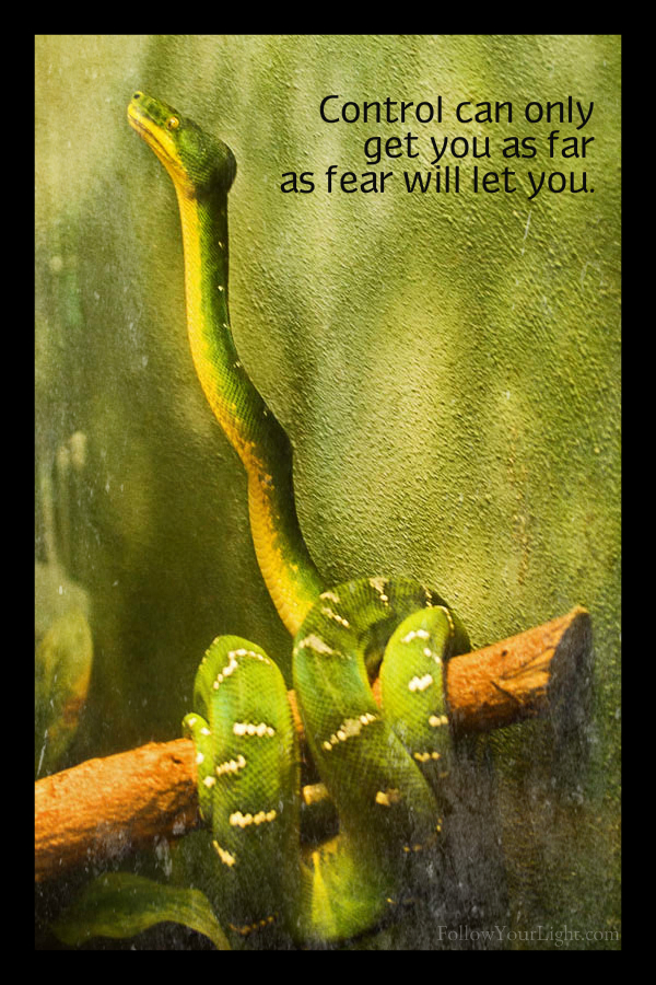 How Far Will Fear Take You