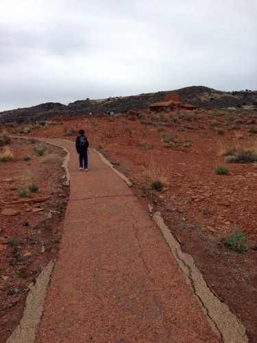 walking a path at the Petrified Forest, AZ.    photo by ces
