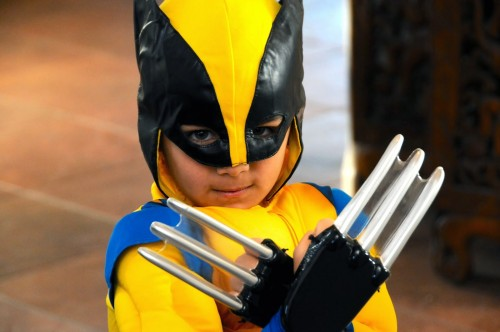 mini Wolverine. photo by ces