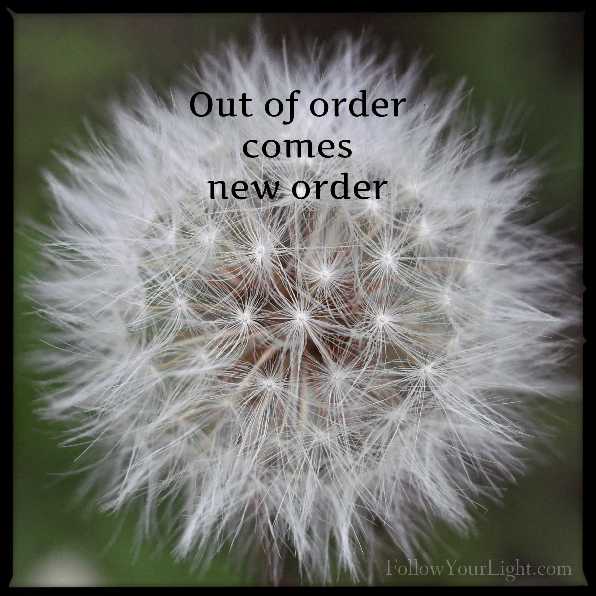 Out Of Order Into New